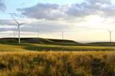 Windmill farm at sunset — Stock Photo