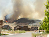 Wild fire or forrest fire endangers neighborhood — Stock Photo