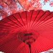 Japanese red umbrella — Stock Photo