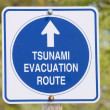 Tsunami sign — Stock Photo
