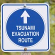 Stock Photo: Tsunami sign