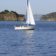 Sailboat in the bay — Stock Photo