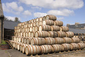 Barrels stcked up in the distillery yeard ready for use — Stock Photo