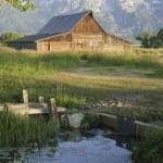 Old Mormon Barn against the tetons — Stock Photo #11033918