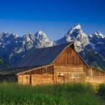 Old Mormon Barn in the Tetons — Stock Photo #11034471