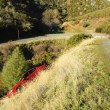 Car slid off road and down slope in Northern california — Stock Photo #11035080