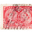 Vintage English colony postage stamps - Stock Photo