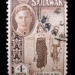 Vintage Sarawak postage stamp — Stock Photo