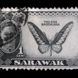 Stock Photo: Vintage Sarawak postage stamp
