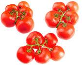 Bunches of tomatos — Stock Photo