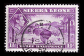 Vintage Sierra Leone postage stamp — Stock Photo