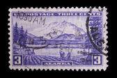Vintage uns commemorative briefmarke — Stockfoto