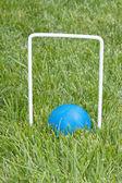 Croquet ball sitting under a hoop — Stok fotoğraf