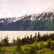 Panorama of alaska — Stock Photo