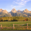 Stock Photo: Sunrise in Tetons