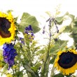 Sunflower in bouqet — Stock Photo #11114039