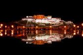 Potala Palace Reflection Fountain Water Night — Stock Photo