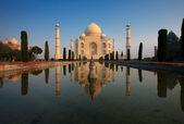 Sunrise Taj Mahal Reflection Center — Stock Photo