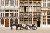 Antwerp Grote Markt Horse Buggy Driver Guildhouse — Stock Photo