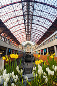 Antwerp Central Train Station Glass Ceiling — Stock Photo