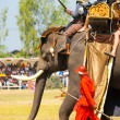 Stock Photo: Battle Reenactment Siamese Burmese Elephant King