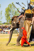 Battle Reenactment Siamese Burmese Elephant King — Stock Photo
