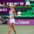 Stock Photo: MariKirilenko Walking Away Profile