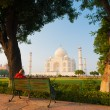 Stock Photo: Taj Mahal Framed Park Bench Grass Trees Shrubs H