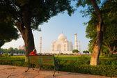 Taj Mahal Framed Park Bench Grass Trees Shrubs H — Stock Photo