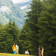 Pahalgam Kashmir Indian Tourists Mountain Nature — Stock Photo