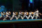 Taekwondo Kicking Breaking Row Wooden Boards — Stock Photo