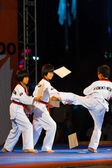 Young Korean Boys Taekwondo Kicking Demonstration — Stock Photo