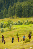 Kashmir Gypsy Goatherders Walking Hill — Stock Photo