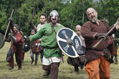 Attacking Vikings at Moesgaard — Foto Stock