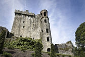 Blarney Castle main view — Stock Photo