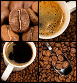 Collection of coffee — Stock Photo