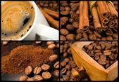 Colección café — Foto de Stock