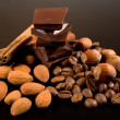 Chocolate, coffee , cinnamon and nuts — Stock Photo