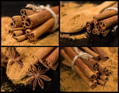Collection of cinnamon — Stock Photo