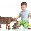 Painting kid with mother and child cats — Stock Photo #11076013
