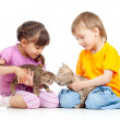 Stock Photo: Children boy and girl playing with kittens. Isolated on white ba
