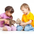 Children boy and girl playing with kittens. Isolated on white ba — Stock Photo