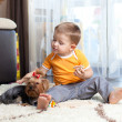 Kid playing with puppy indoor — Stock Photo