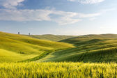 Wide views of Tuscany — Stock Photo