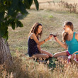 Happy picnic — Stock Photo