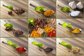Choice of spices and herbs — Stock Photo