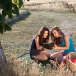 Stock Photo: Picnic and good book
