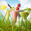 Fruit smoothies in the garden — Stock Photo