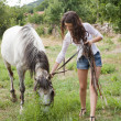 Girl with farm horse — Stock Photo