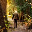 A walk in the park — Stock Photo